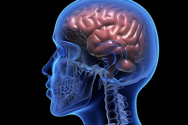 cannabis y epilepsia