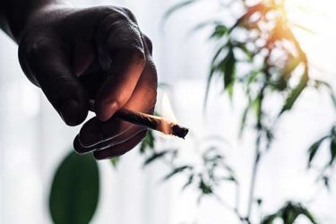 Cannabis fumado para el dolor neuropático crónico: un ensayo controlado aleatorio