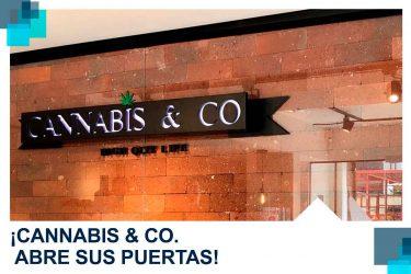 cannabisco abre puertas